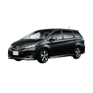 Коврики для Toyota Wish