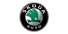 Автомобильные коврики для Skoda